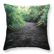 Smokey River Throw Pillow