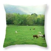 Smokies Horses Throw Pillow