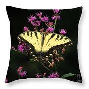 Smoky Mountain Butterfly Throw Pillow