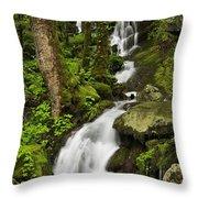 Smoky Mountain Cascade - D002388 Throw Pillow