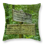 Smoky Mountain Directional Throw Pillow