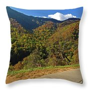 Smoky Mountain Scenery 8 Throw Pillow