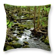 Smoky Mountain Stream 2 Throw Pillow