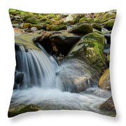 Flowing Stream #3, Smoky Mountains, Tennessee Throw Pillow