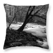 Smoky Mountain Stream Throw Pillow