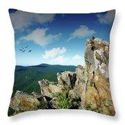 Smoky Mountain View Throw Pillow