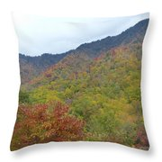 Smoky Mountains National Park 4 Throw Pillow
