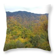 Smoky Mountains National Park 5 Throw Pillow