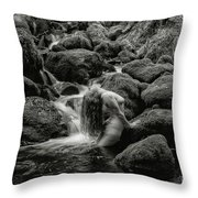 Smooth Curves. Throw Pillow