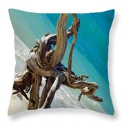 Smooth Lines Throw Pillow