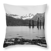 Smooth Seward Alaska Grayscale Throw Pillow