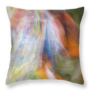 Smudge 212 Throw Pillow