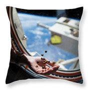 Snacking In Space Throw Pillow