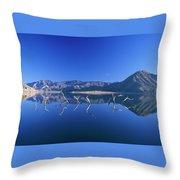 Snags- Lake Isabella Throw Pillow