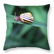 Snail In His Green Jungle Throw Pillow