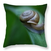 Snail In The Morning Throw Pillow