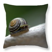 Snail On Rock Throw Pillow