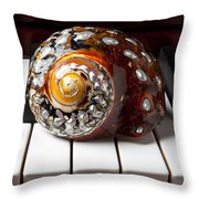 Snail Shell On Keys Throw Pillow