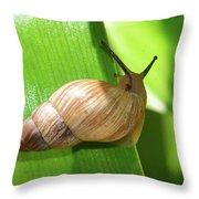 Snail Work B Throw Pillow