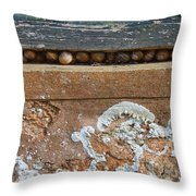 Snails At Home With Lichen Throw Pillow