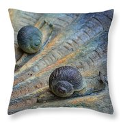Snail's Pace Throw Pillow