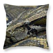 Snake At Rest. Throw Pillow