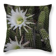Snake Cactus Flowers Throw Pillow