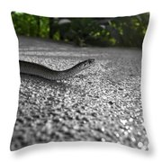 Snake In The Sun Throw Pillow
