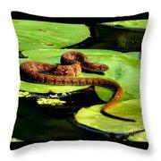 Snake Life Throw Pillow