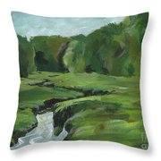 Snake Like Creek 2 Maine Throw Pillow