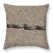 Snake On The Road Throw Pillow