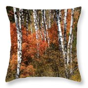 Snake River Canyon Throw Pillow