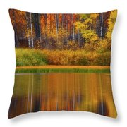 Snake River Fall Colors Throw Pillow