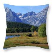 Snake River, Grand Tetons National Park Throw Pillow