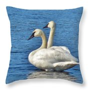 Snake River Swans Throw Pillow