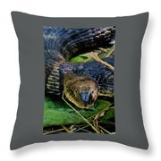 Snakehead Throw Pillow