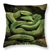 Snakes Alive Throw Pillow