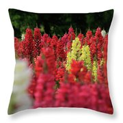 Snap Dragon Flowers Throw Pillow by Tracy Hall