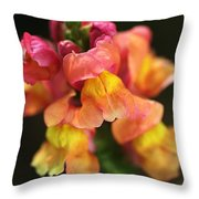 Snapdragon Flowers Throw Pillow
