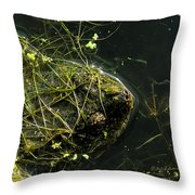 Snapping Turtle Head Throw Pillow