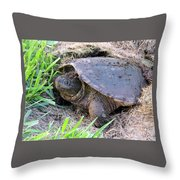 Snapping Turtle Laying Eggs Throw Pillow
