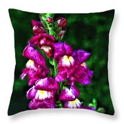 Snappy II Throw Pillow