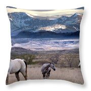 Snapshot Throw Pillow