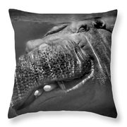Sneaky Underwater Hippo Grin Throw Pillow