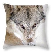 Sneaky Wolf Throw Pillow