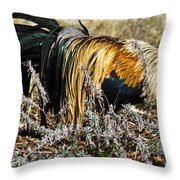 Sneeking Rooster Throw Pillow