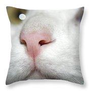 Snif-snif Throw Pillow