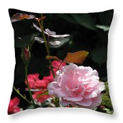Sniff - Tea Rose Throw Pillow