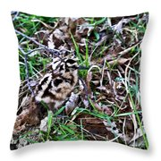 Snipe In Camouflage 2 Throw Pillow