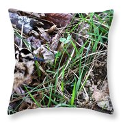 Snipe In Camouflage Throw Pillow